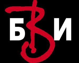 BVi-logo1